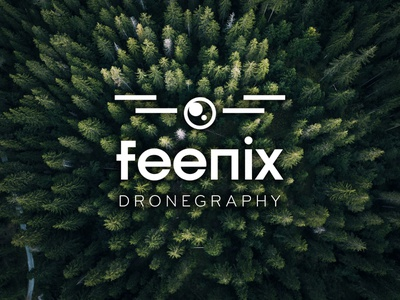 Drone photography business video drone clean identity branding simple logo design logo