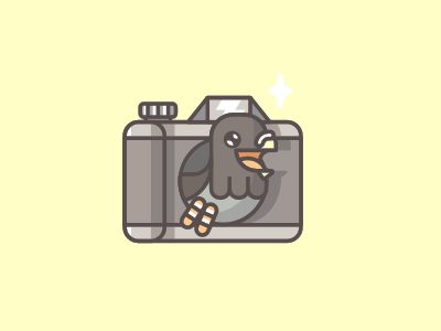 Pigeon Photo stolz logo mark pigeon camera photo fun line