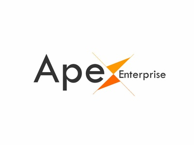 Apex Enterprise Logo illustration massive it solutions branding logo