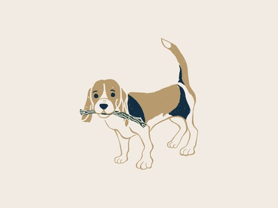 Grounds & Hounds Camp Out Beagle Illustration pup puppy puppies dogs grounds and hounds coffee packaging coffee cute illustration cute illustrations cute dog camping dog camping illustration camping out camp out camping dog illustration dog with stick beagle illustration beagle dog beagle