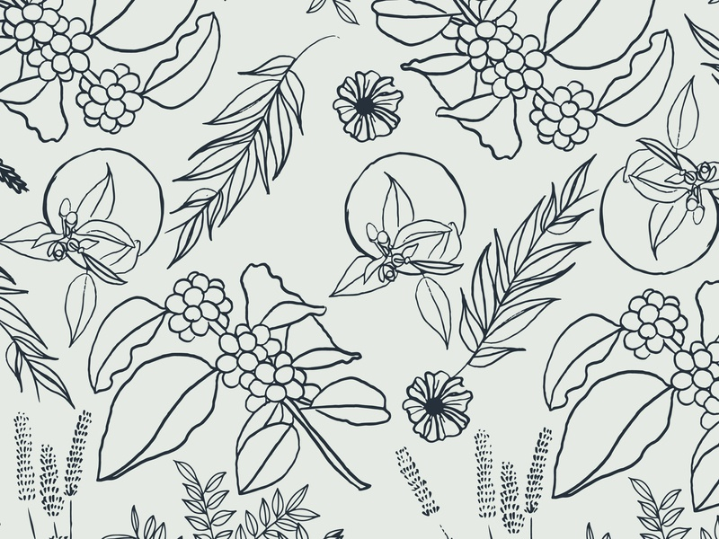 Brewpoint Coffee - Floral Pattern coffee plant coffee pattern floral digital illustration illustration