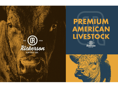 Rickerson Cattle Company - Execution restaurants food farm ranch cattle cow brand identity brand logo font color type illustration