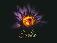 Evoke Banner