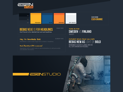 ESEN Studio Style Guide style guide brand gaming esen