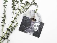 Custom Post Card Online
