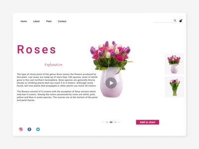 Web Design marketplcae Plant