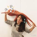 Xiaoyu Ji