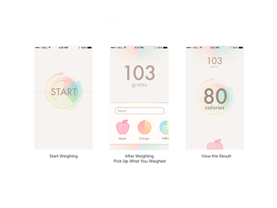 iOS App Interface ios7 ios8 health food scale calories personal informatics interface ios app flat blur