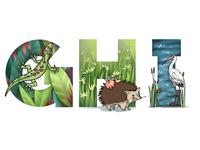 Alphabet: gecko, hedgehog, ibis