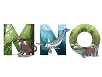 Alphabet: monkey, narwhal, otter