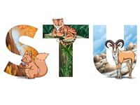 Alphabet: squirrel, tiger, urial