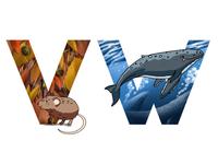 Alphabet: mole, whale