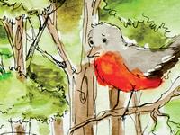 Dirtyfeet Robin