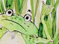 Dirtyfeet Frog