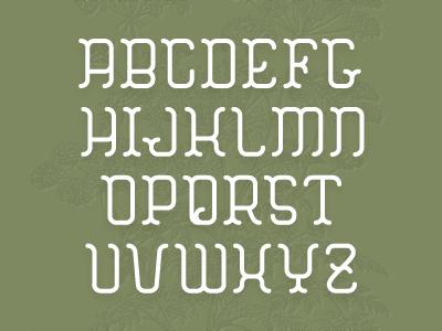 HEMLOCK : Type Specimen type font alphabet type specimen typography botanical serif michael spitz michaelspitz