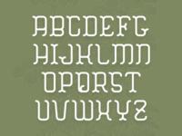 HEMLOCK : Type Specimen
