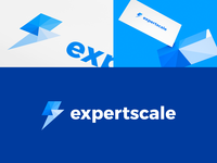Expertscale Identity Project