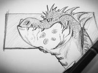 Dragon Sketch 800x600