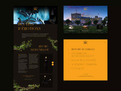 Chateau Ducru Beaucaillou bottle castle vine grapes wine clean web freelance typogaphy layout