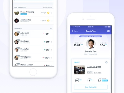 Teambrella - Members Overview stats message insurance members ios profile account bitcoin