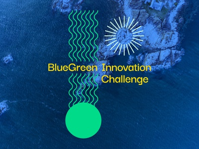 SeaAhead BlueGreen Challenge graphicdesign color palette visual identity brand identity pattern sustainability environmental color branding illustration design