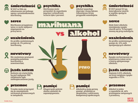 Cannabis vs alkohol Infographic information design illustration marijuana cannabis alkohol infographics infographic design infography infographic