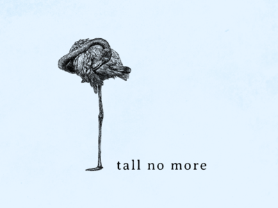 Tall No More