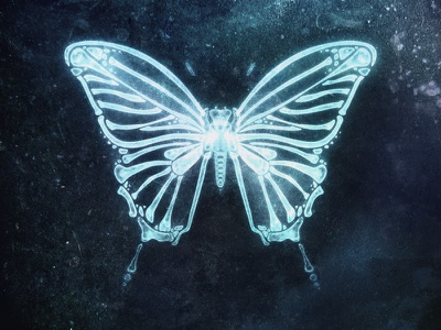 Butterfly in X-ray illustration x-ray xray butterfly cg painting digital painting art
