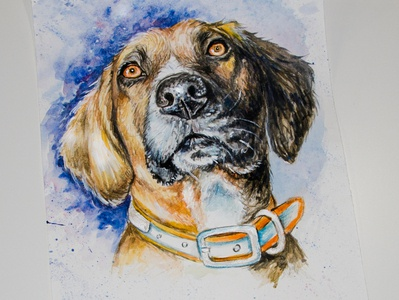 watercolor portrait of a dog