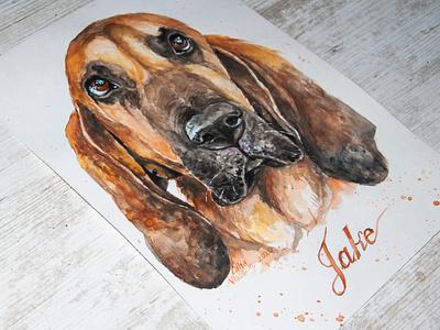dog, watercolor portrait portrait art aquarell picture portrait dog painting
