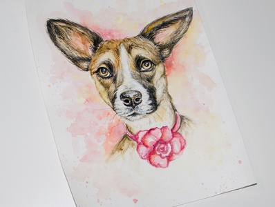 Dog, watercolor portrait