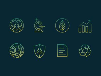 Evergreen Icons