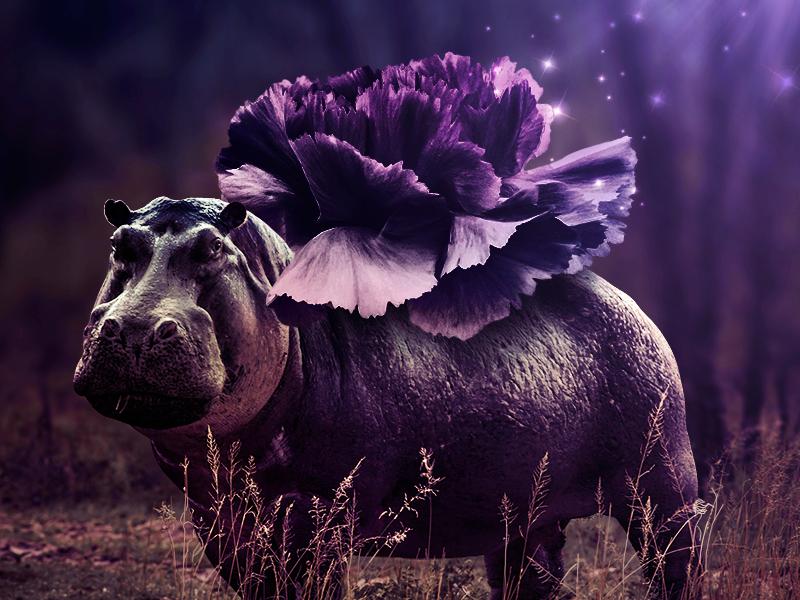 Feel the smell. fantasy assembly manipulation imaginary world imagination animal art animal