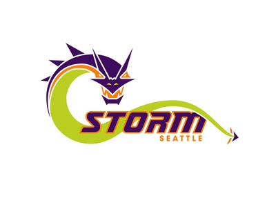 Storm Logo illustration digitalart vector logo design branding logo