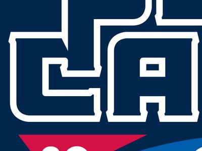 Sneak Peak - New 2014 Project sports type ribbon lettering typography