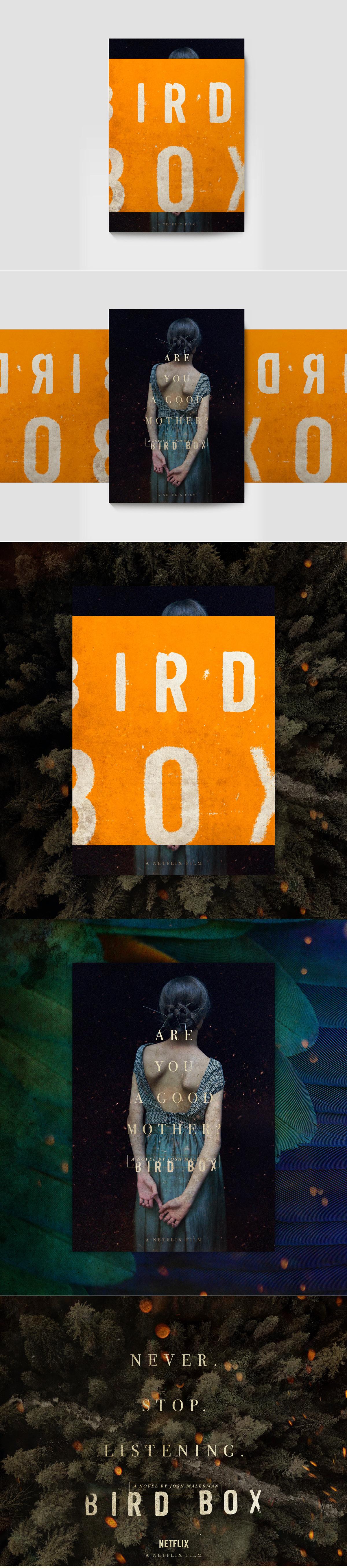 Birdbox Blindfold Book01 Layout By Paul Drohan Dribbble Dribbble