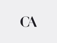 Type Logo Concept