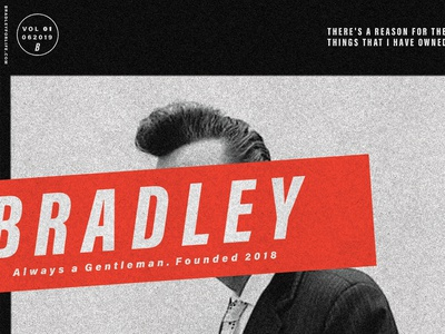 """""""Bradley"""" Ted Poster 01"""