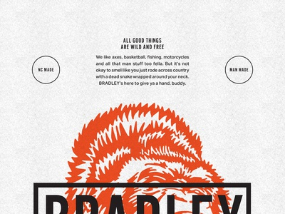 Bradley Teaser Poster Detail