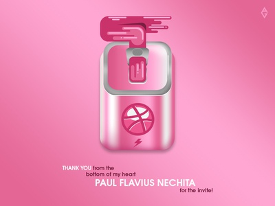 THANK YOU Paul Flavius Nechita