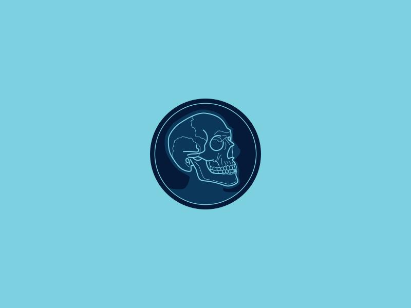 Skull Xray skeleton anatomy mobile medical xray skull branding emblem outline logo