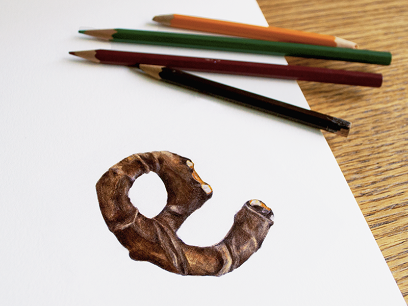 Pretzel e workspace paper pencil sketch font illustration drawing hand drawn lettering typography candy food