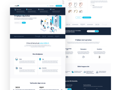 Web design for IT consult agency