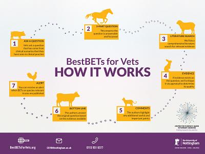 BestBETs for Vets - Infographic Design infographic infographic design layout graphic  design animals flat poster university veterinarian info graphic stippling vector illustration design