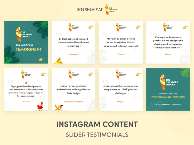 The Cacatoès Theory - Instagram : Slider testimonials instagram post graphic design slider linkedin instagram cacatoes tesmimonials