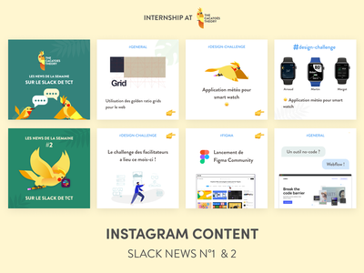 The Cacatoès Theory - Instagram : Slack News social media cacatoes news slack instagram post instagram illustration