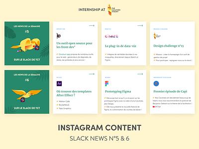 The Cacatoès Theory - Instagram : Slack News birds slack cacatoes internship figma slider linkedin instagram post instagram