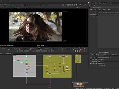 Recorte de pelo, con canal alpha en video NUKE 11. design video art video animation chroma video