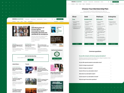 Mergers and Acquisitions subscription pricing page typography ux ui development design custom wordpress