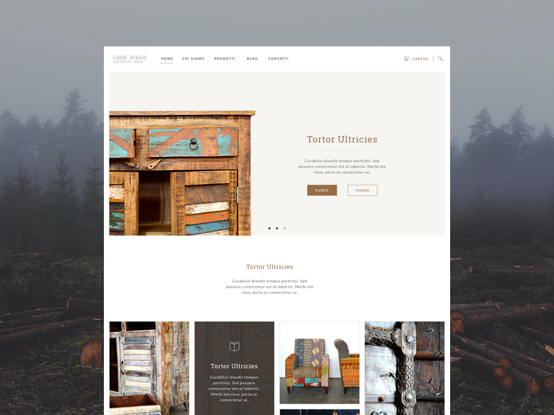 Ethnic furniture website website e-commerce furniture flat grid brown web design ui design